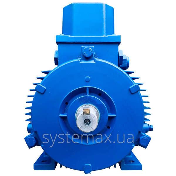 АІР 100 S4 Е (Е2) (3 кВт 1500 об/хв) двигун трифазний Могильов Білорусь - фото 2