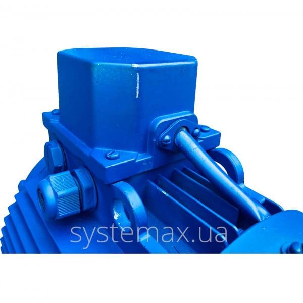 АІР 100 S4 Е (Е2) (3 кВт 1500 об/хв) двигун трифазний Могильов Білорусь - фото 6