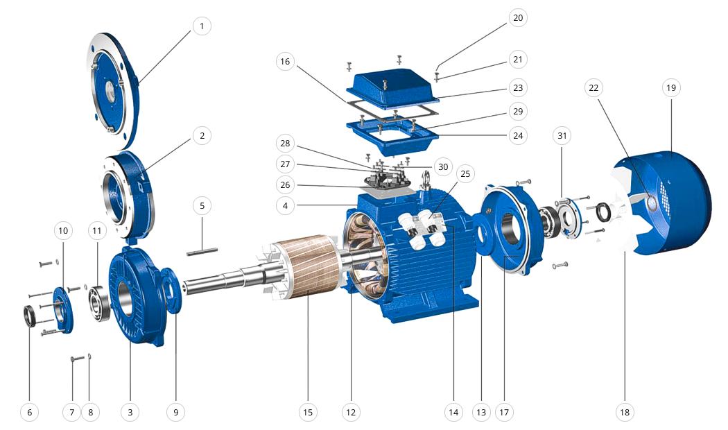 Схема: конструкция электродвигателя АИР (двигатель в разборе)